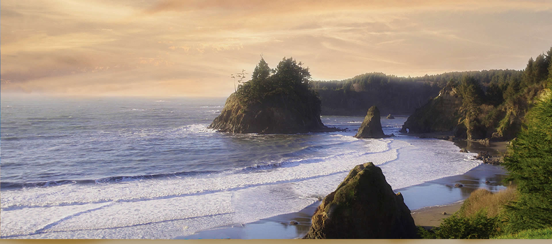 Northern California Redwood coast ocean view