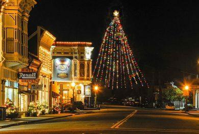 America's Tallest Living Christmas Tree